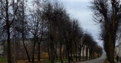 ГОРОДСКОЕ УПРАВЛЕНИЕ СИЛЛАМЯЭ ПРЕДСТАВИЛО ПРОЕКТ В ФОНД KIK ДЛЯ ЗАМЕНЫ УСТАРЕВШЕГО УЛИЧНОГО ОСВЕЩЕНИЯ