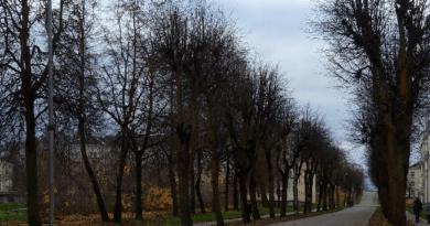ФОНД KIK ОДОБРИЛ ПРЕДСТАВЛЕННЫЙ ГОРОДСКИМ УПРАВЛЕНИЕМ СИЛЛАМЯЭ ПРОЕКТ
