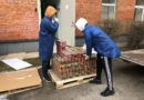 Волонтеры ESN помогают Силламяэ