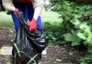 Весенняя уборка в соответствии с действующими ограничениями